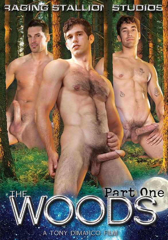 Big gay dick pics naked sword video